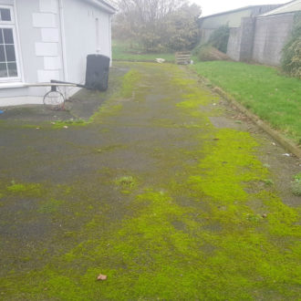 Front yard in its original state before power-washing work by bp painters and decorators